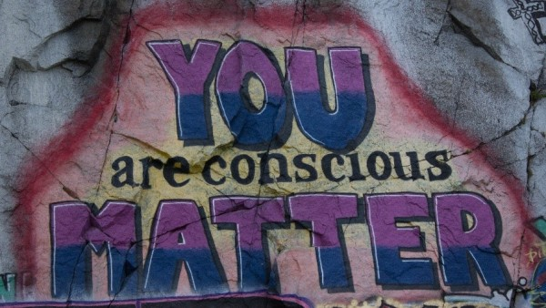 GRAFFITI WITH A MESSAGE Photo by Larry Cotton