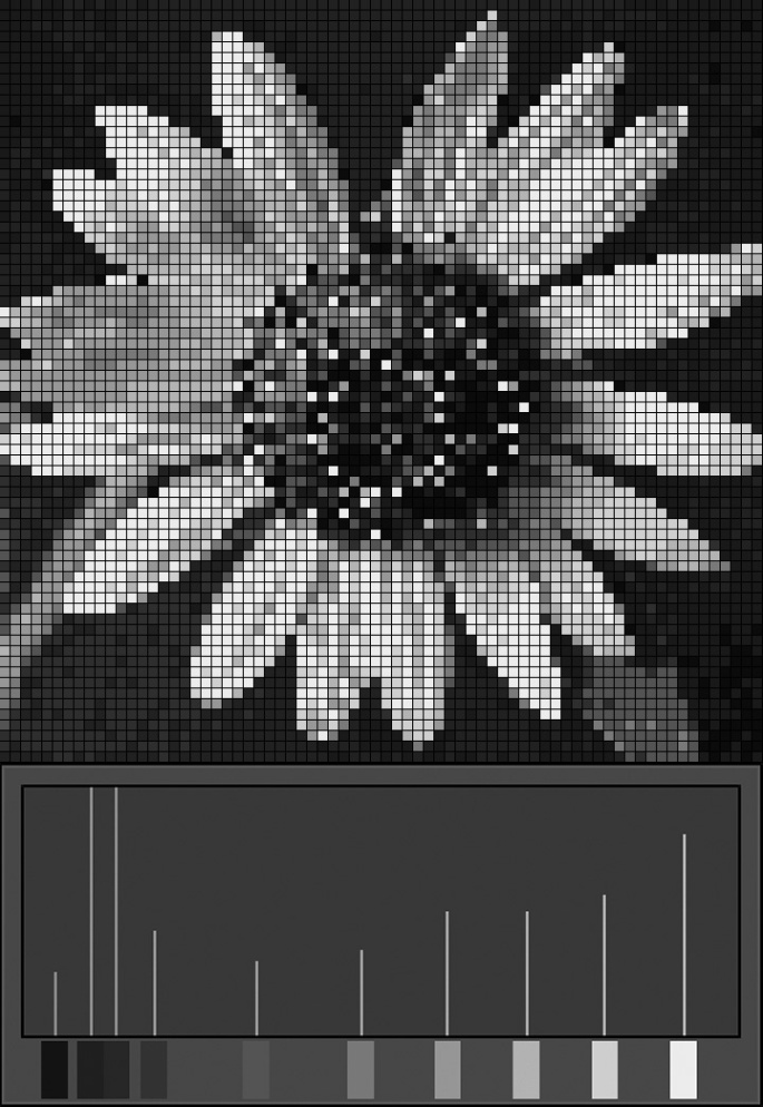 sunflower-mosaic-with-histo